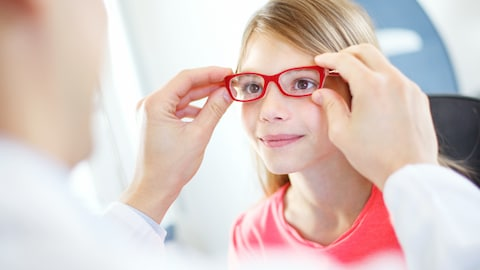 Selon l'Ordre des optométristes du Québec, un enfant sur cinq à l'école primaire « n'a pas les capacités visuelles optimales pour assurer son apprentissage et sa réussite scolaire ».
