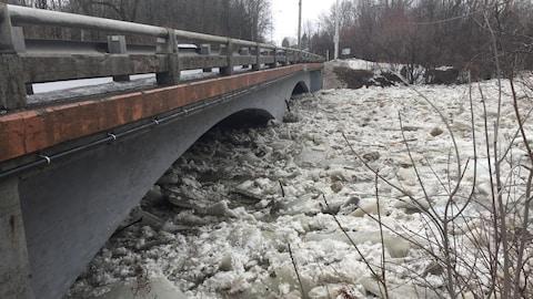 Vue d'un pont sous lequel le niveau de l'eau est très élevé.