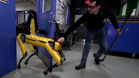 Un homme agrippant un robot chien par une partie de son postérieur.