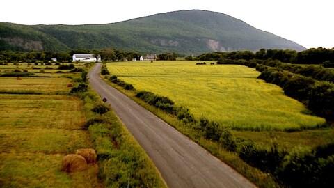 Une route de campagne avec une montagne en arrière-plan