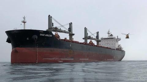 Le navire Sage Amazon