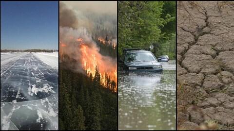 Un collage de plusieurs photos: une route de glace, un feu de forêt, une rue inondée et un champ asséché.