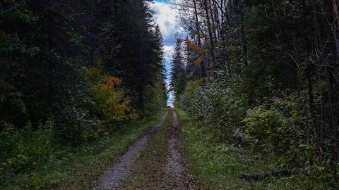 Un sentier de randonnée.