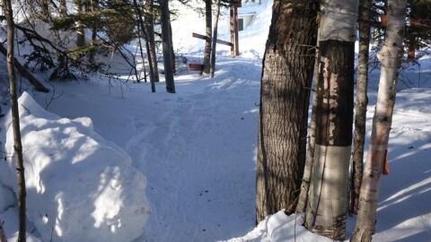 Sentier de raquette au club de ski de fond de Matane