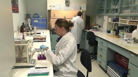 Des stagiaires dans un laboratoire