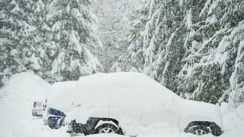 Une importante accumulation de neige sur des voitures.