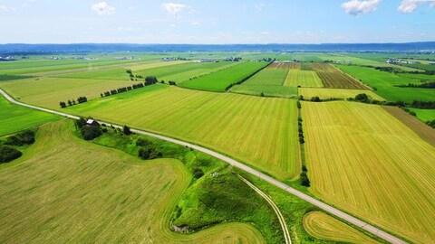 Terres agricoles du Québec vues du ciel.
