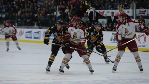 Des joueurs des Tigres de Victoriaville et du Titan de l'Acadie-Bathurst sur la glace du Colisée Desjardins.