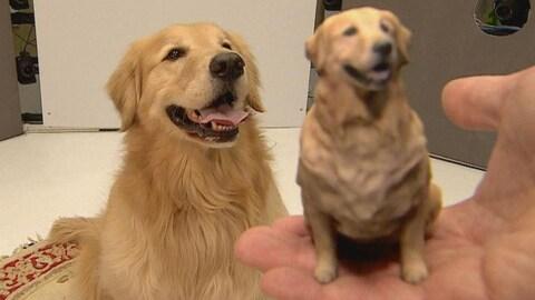 Un chien pose à côté de sa figurine dans un studio de photo.