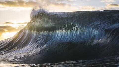 Une énorme vague.