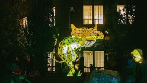 Le dessin géant d'un léopard est projeté de nuit sur le mur d'un immeuble.