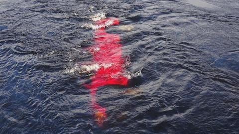 Le véhicule rouge sous l'eau.