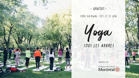 Affiche de Yoga sous les arbres