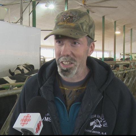 Marcel Daigle, propriétaire de la ferme Oscar Daigle et fils, à Baker-Brook au Nouveau-Brunswick, près de ses vaches.