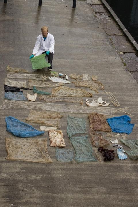 Un chercheur norvégien étend sur un quai des sacs de plastique retrouvés dans l'estomac d'une baleine.