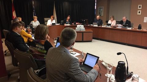 Le conseil municipal de la Ville de Rouyn-Noranda.