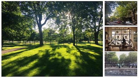 Les parcs de Montréal, ses rues, ses vélos et ses commerces sont illustrés dans l'exposition #jaimemtl.