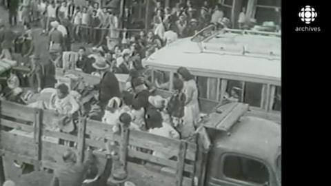 Scène en noir et blanc des familles de Canadiens d'origine japonaise entassées dans des camions.