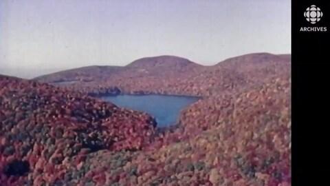 Vue automnale d'un lac entouré de forêt.