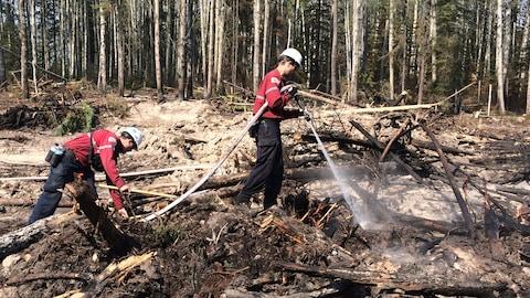 Des pompiers de la SOPFEU combattent un feu de forêt