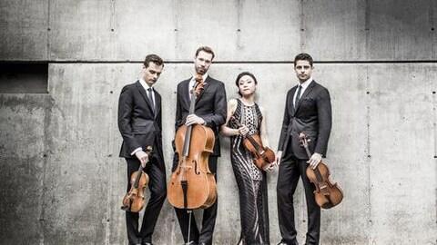 Trois hommes et une femme, membres du quatuor à cordes Tesla.