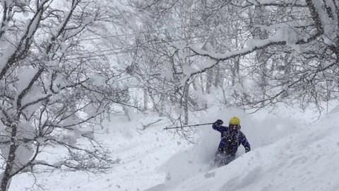 Un skieur hors piste dans la neige.