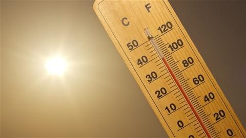 Un thermomètre indique une grande chaleur.
