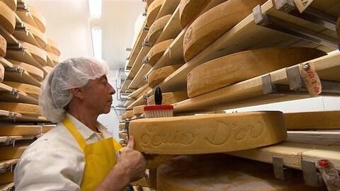 Le fromager Jean Morin procède à l'affinage du Louis  d'or, un fromage maintes fois primé.