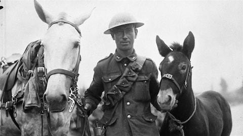 Un soldat de la Première Guerre mondiale avec un cheval blanc et un poulain foncé.