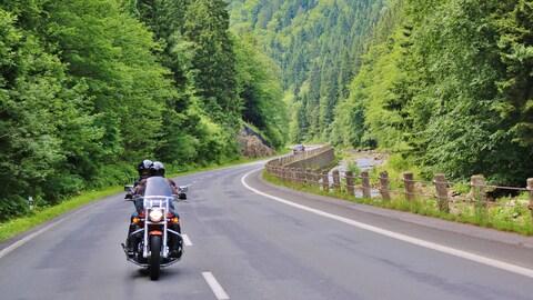 Une moto roule sur une route à travers une forêt montagneuse.