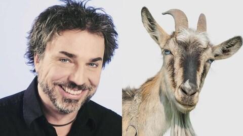 Christian Bégin (à gauche) et la photo d'un bouc (à droite).