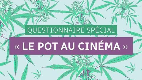 Questionnaire spécial « le pot au cinéma ».