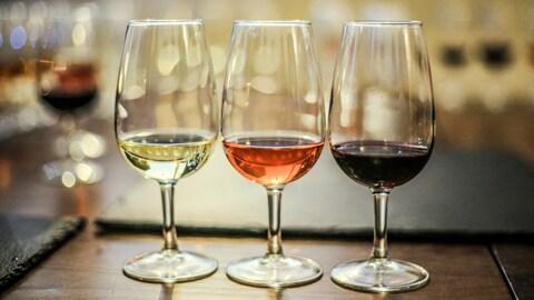 Le vin est servi dans des verres de dégustation.
