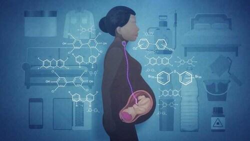 Illustration représentant une femme enceinte, dont l'embryon est visible en semi-transparence dans son ventre. Les éléments de son environnement (bouteilles de plastique, pots de peinture, etc) sont accompagnés de symboles chimiques en surimpression.