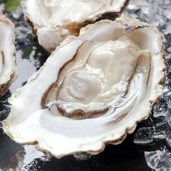 Zoom sur une huître fraîche sur un plateau avec d'autres huîtres et de la glace.