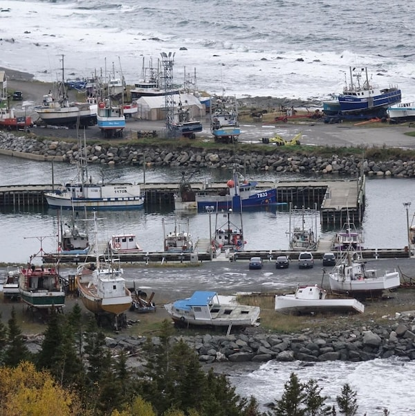 En arrière-plan, des bateaux remisés et un hangar; au centre de l'image, le quai avec des bateaux accostés; en avant-plan, d'autres bateaux accostés à une autre partie du quai et un autre espace de remisage pour les bateaux