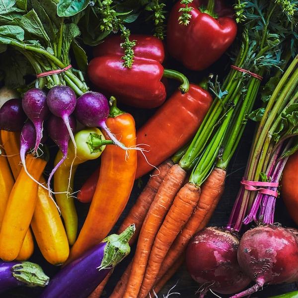 Une abondance de légumes du marché : courgettes, radis, poivrons, aubergines, carottes, betteraves, etc.