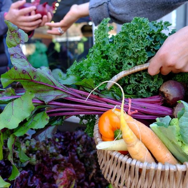 Panier en osier avec un assortiment de légumes frais.