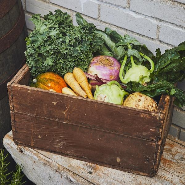 Une boîte en bois remplie de légumes, tels que des panais, du chou kale, du chou-rave et des bettes à carde.