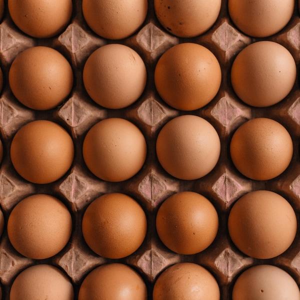 Un carton d'œufs bruns vu de haut.
