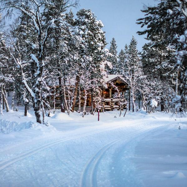 Un sentier en bois rond borde un sentier pour les adeptes de ski de fond.