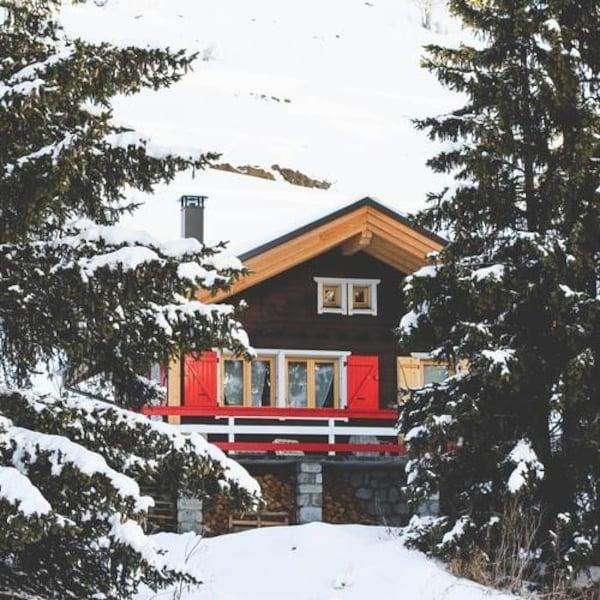 Un chalet entouré de conifères durant l'hiver.
