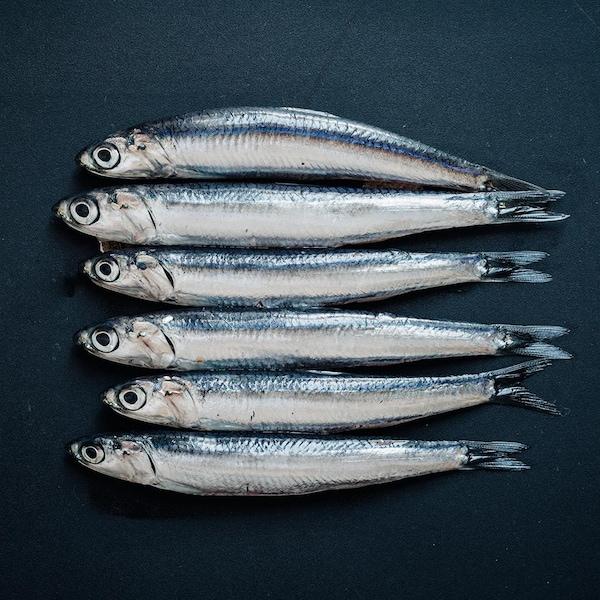 Quelques anchois entiers.