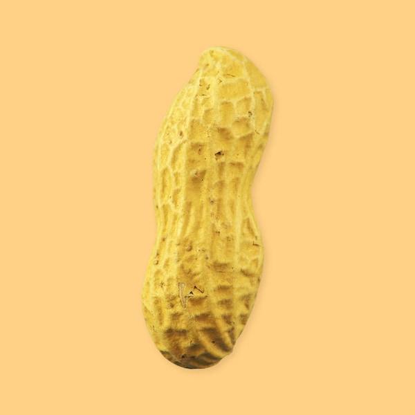 Une arachide entière.