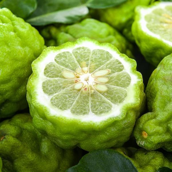 Plusieurs bergamotes vertes.