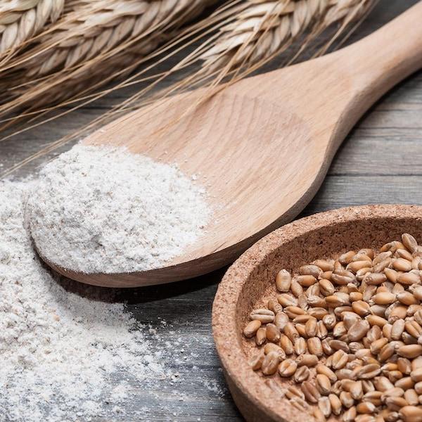 Des cuillères remplies de farine de blé entier.