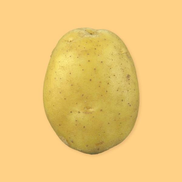 Une pomme de terre blanche entière avec sa pelure.