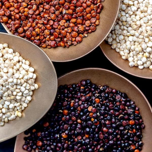 Différentes sortes de quinoa dans des bols.