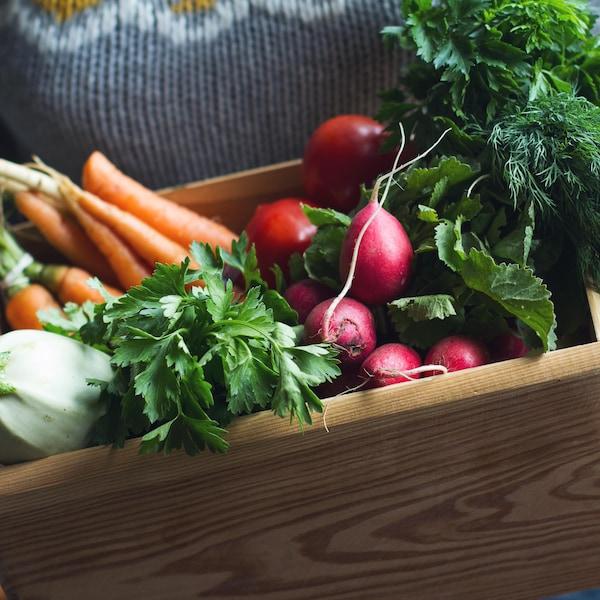 Une personne tient une caisse en bois. Celle-ci contient des carottes, des tomates, du persil italien et des radis.