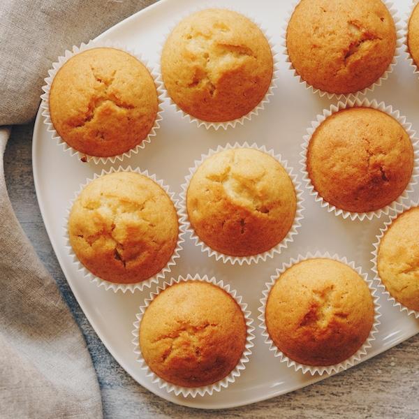 Muffin de base - Recettes - Mordu